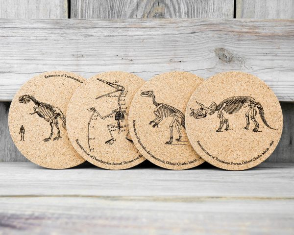 Cork coasters featuring original drawings of dinosaur skeletons