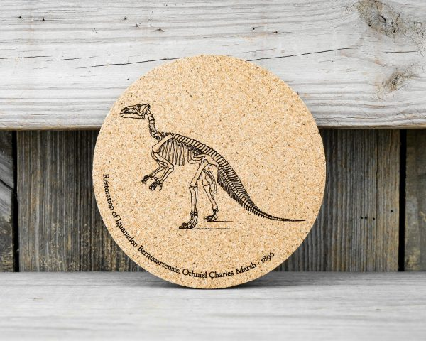 Cork coasters featuring original drawing of Iguanadon skeleton